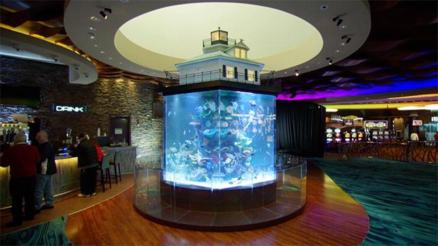 Casino Fish tank